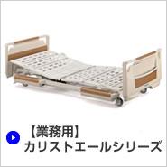 【業務用】カリストエールシリーズ